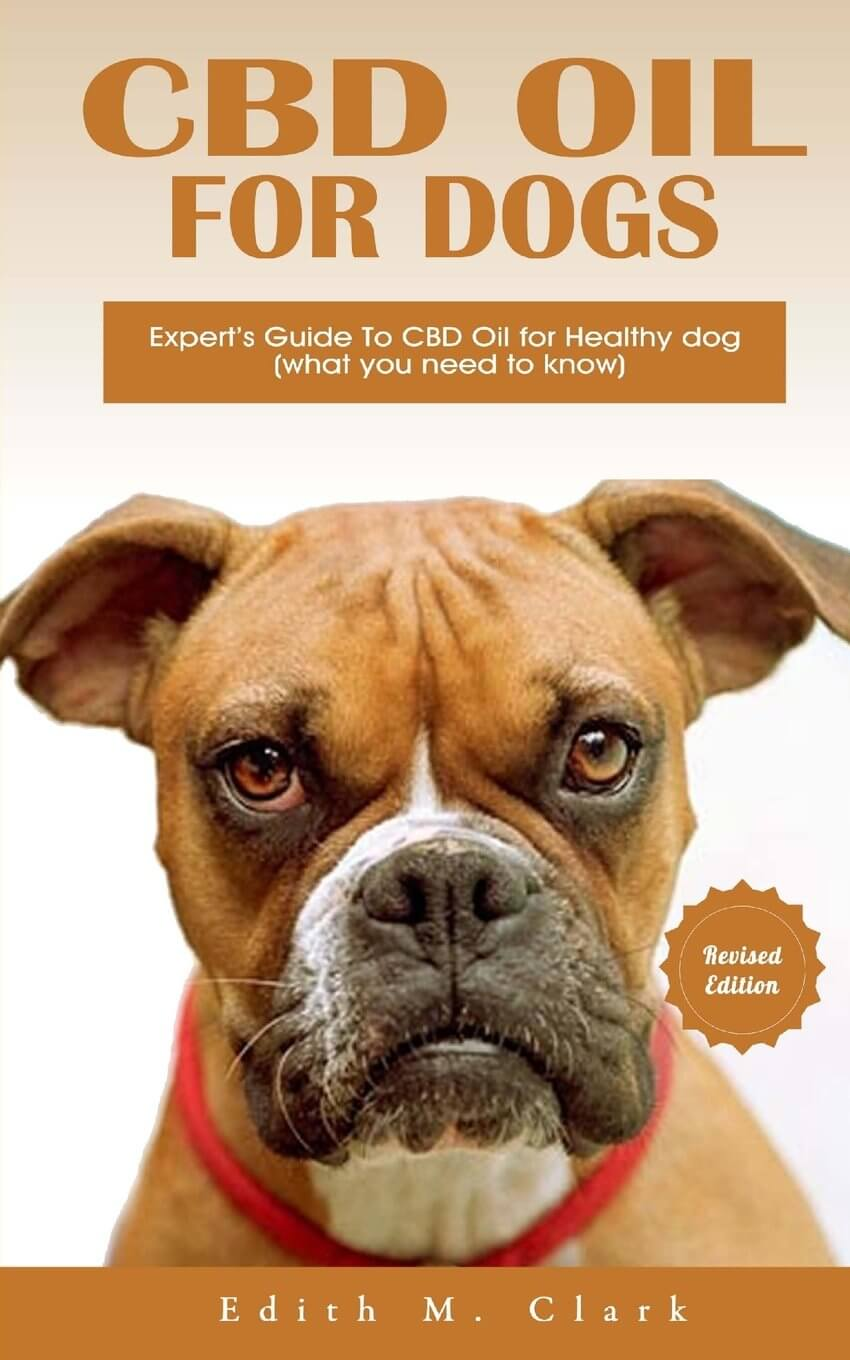 CBD Oil For Dogs, Is It Safe? – Benefits and Side Effects