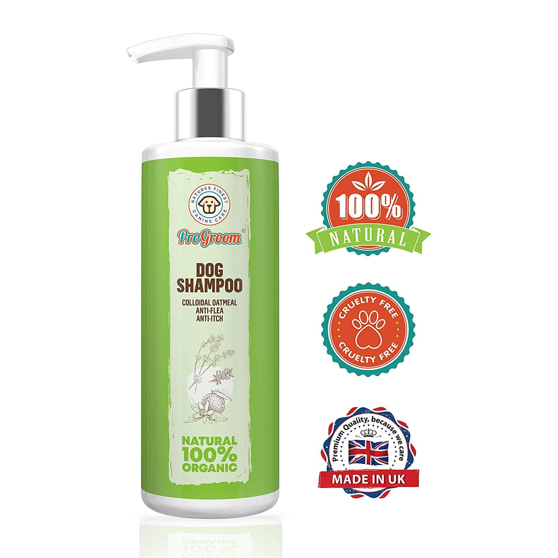 pro groom dog shampoo