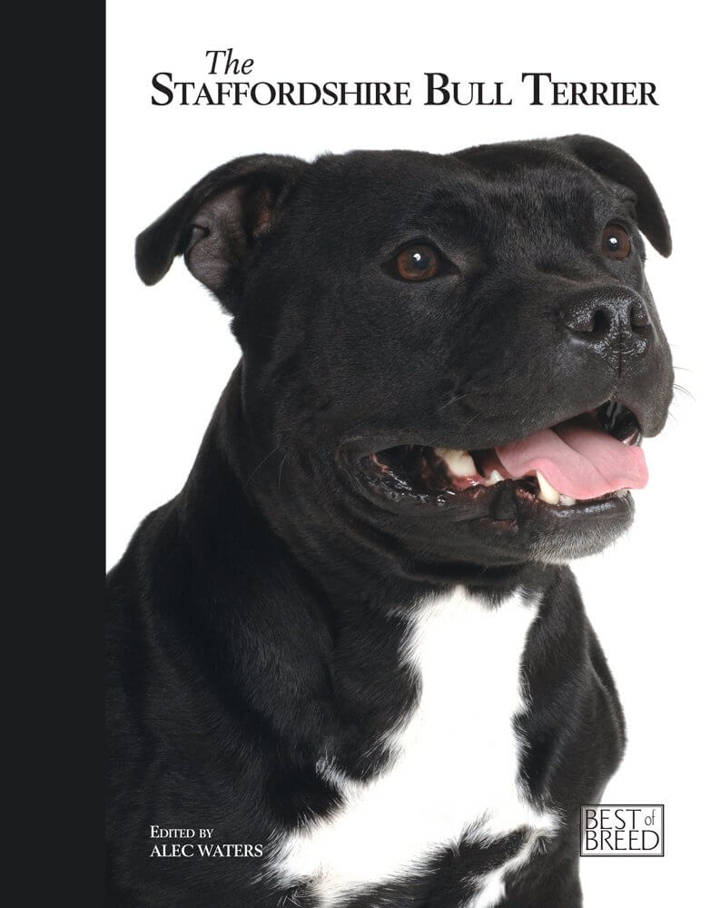best of breed staffordshire bull terrier book