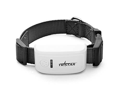 TKStar GPS dog tracking collar