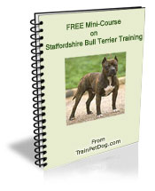 staffy training book