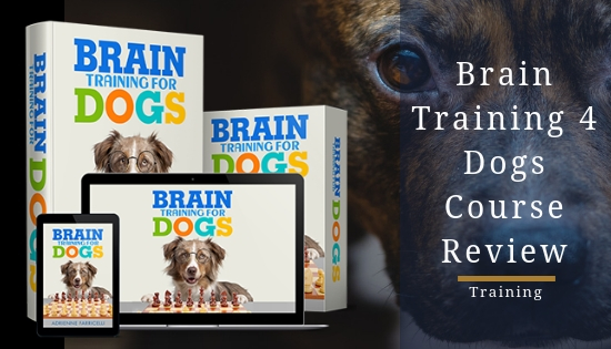 Brain Training 4 Dogs Obedience Training Commands  Vip Coupon Code June 2020