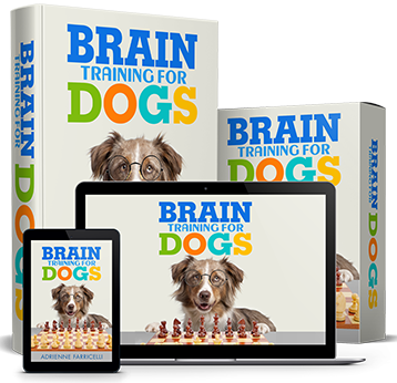 brain training for dogs cover image