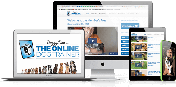 the online dog trainer course image