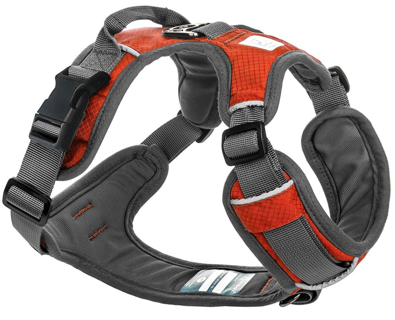 Best Harness for Staffies 2020 – Staffy Harness and Lead Reviews